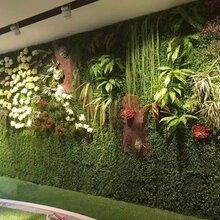 室内植物墙仿真植物墙植物墙造型
