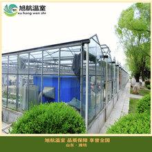 智能型温室大棚造价智能型玻璃温室智能文洛玻璃温室