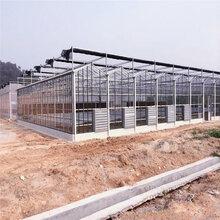 江苏玻璃温室大棚造价纹络型温室建设预算智能玻璃大棚承建商图片
