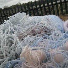 东莞塑胶废料高价回收