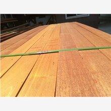 巴劳木原木锯材厂家直供山东青岛巴劳木地板定制加工
