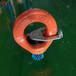 倍力特吊環螺釘,新鄉止動片旋轉環