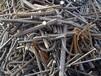 湖南衡阳电缆最新回收价格最近行情