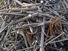 山東陽信185電纜回收廢舊