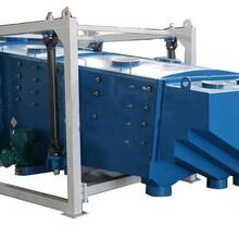 广东专业生产方形摇摆筛厂家价格赛扬机械设备图片