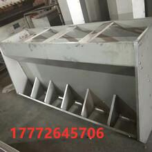 定制不同尺寸养殖设备-不锈钢201/304不锈钢食槽保育育肥猪用食槽图片