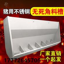 猪用食槽双面料槽自动采食槽双面十孔不锈钢育肥食槽养猪设备厂家图片