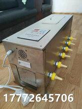 貴州仔豬奶媽機恒溫小豬擠奶機豬崽補奶神器養豬設備自動媽媽機帶聲源圖片