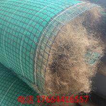 包頭抗沖生物毯供應歡迎來電咨詢圖片