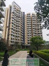 特别好消息,光明三大栋光明凤凰城68万起深圳一套房图片