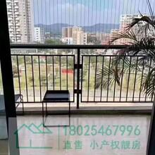 特别好消息!光明村委统建楼63万起大型花园小区图片