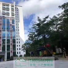 特别好消息!长龙站布吉花园小区房,三房总价125万/套起,图片
