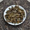 邦东古树茶青饼厂家