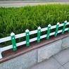 草坪護欄新農村建設用pvc綠化圍欄銀璽品牌