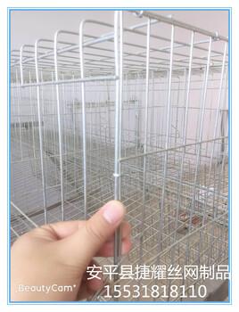 加粗蛋鸡笼养殖场鸡笼子阶梯式蛋鸡笼养殖鸡笼