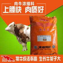 怎样才能养肉牛/肉牛怎样配预混料
