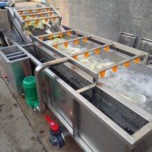 5000高压喷淋胡萝卜大姜气泡清洗机图片