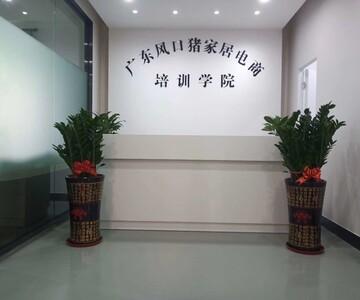 广东风口猪电子商务科技有限公司
