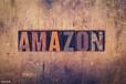 亞馬遜無貨源藍海項目招商加盟,螞蟻店長系統代理定制