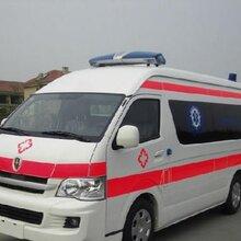 青岛救护车转院电话图片