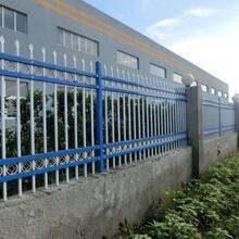 市政-小區鋅鋼圍欄哪家好上海豪衡護欄網廠家質量優價格低圖片