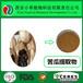 廠家直供黑蒜提取物SAC0.1%(S-烯丙基半胱氨酸)
