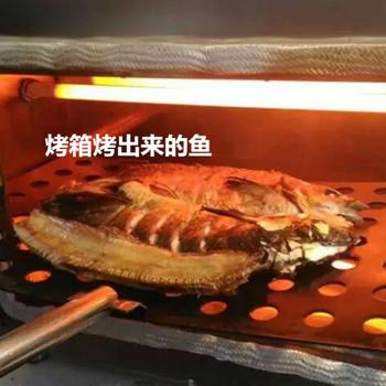 环保型无烟烤鱼箱厂家价格