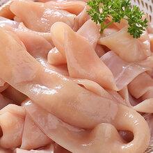 大連新鮮九尺鵝腸批發供應商全國批發圖片