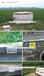 千億斤糧食項目區標識牌制作規范式樣橋井標識道路標識牌千億斤糧食標牌閘涵渠泵站標識