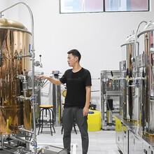 自釀啤酒設備排行榜圖片