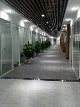 深圳坪山新區辦公室高隔斷尺寸圖片