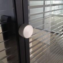 生產辦公鋁合金玻璃隔斷款式新穎圖片