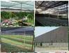 多肉植物度夏,选择什么样的遮阳网(遮荫网)合适