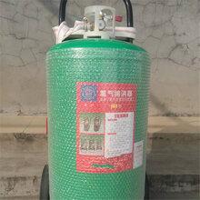廠家低價直銷氯氣捕消器手提式氯氣捕消器LP-50氯氣撲消器圖片