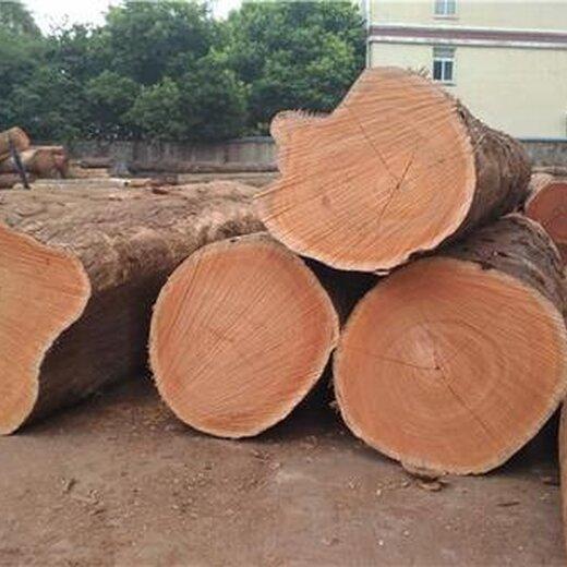 联森木业图