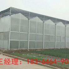 青州瀚洋承建智能pc板温室玻璃温室大棚图片