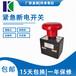 专业生产厂家直销紧急断电开关ED250