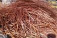 咸宁煤矿电缆回收上门回收