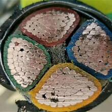 彭水矿用电缆专业回收市场价格图片