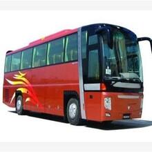 (客车)昆山到永福大巴(长途汽车)查询欢迎您图片