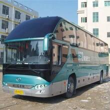 (客车)上海到大竹大巴汽车-乘车指南图片