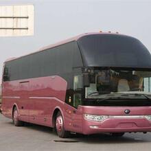 (客车)上海到麻阳汽车(客车线路)线路公告图片