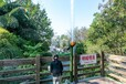 蘇州市供應吶喊噴泉廠家-出售吶喊噴泉價格