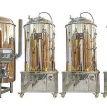 自酿啤酒设备的型号有哪些?选购自酿啤酒设备应该注意什么?图片