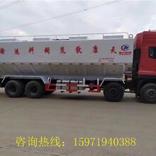 齐河县饲料运输车销售电话,厂家最低价格图片