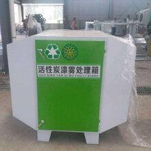 厂家直销环保设备活性炭漆雾处理箱图片