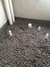 深圳陶粒回填陶粒新型建材价格优惠
