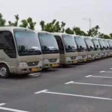 珠海市会务车出租价格租车热线租车图片