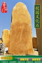 浙江大学校园文化石大型招牌石刻字石