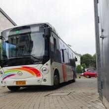 大巴+从昆明到(禹州长途大巴车)线路一览表图片